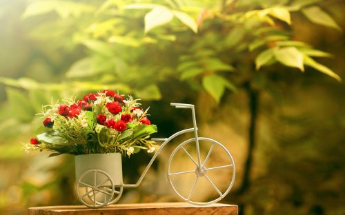 Доставка цветов на все случаи жизни